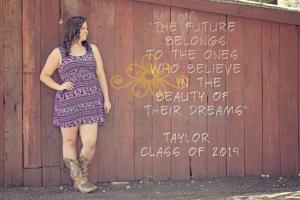 Taylor232
